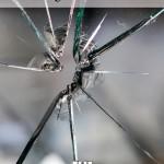 Mucci_Kindle